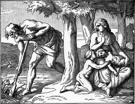 Проклятие Адама