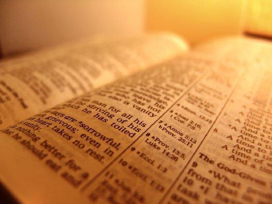 Как в оригинале звучит стих 2-й Книги Царств 12:31?