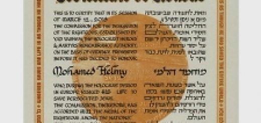 dr._mohamed_helmy