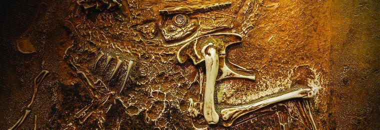 Переполох в палеонтологическом королевстве