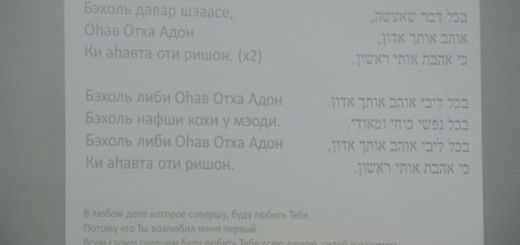maim-zormim-44