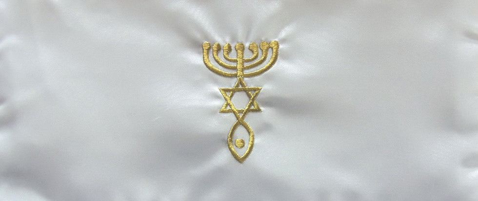 evreimess2