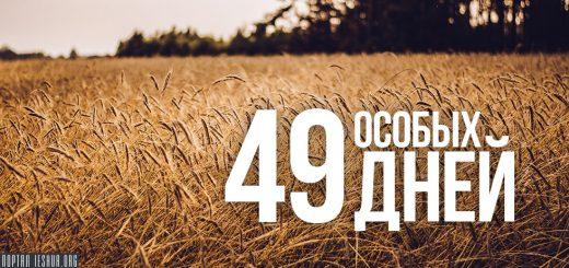 49 особых дней