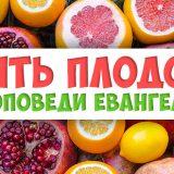 Пять плодов проповеди Евангелия