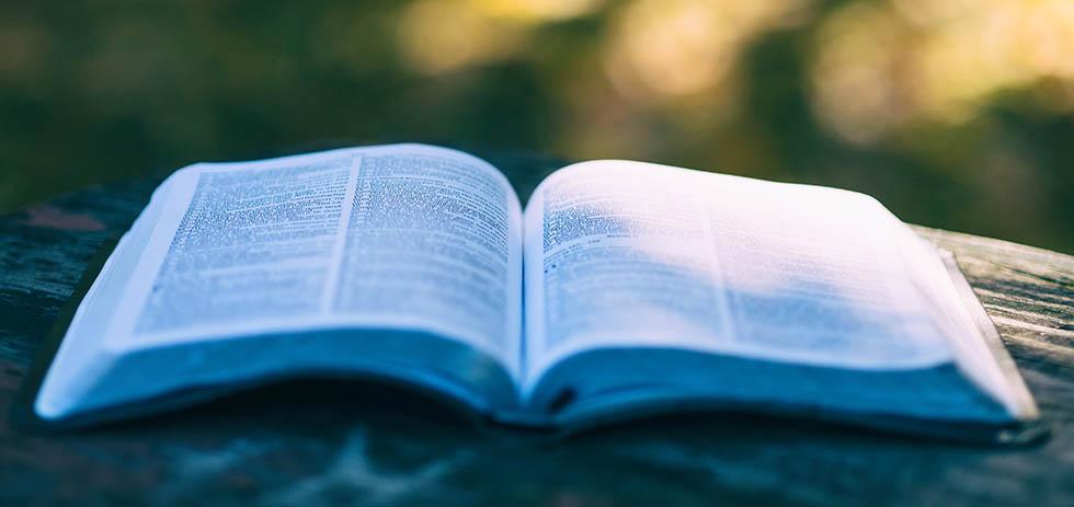 bibleiskoe2