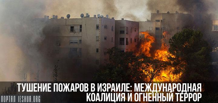 Тушение пожаров в Израиле: международная коалиция и огненный террор