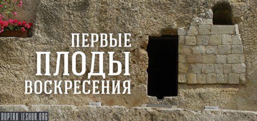 Первые плоды воскресения