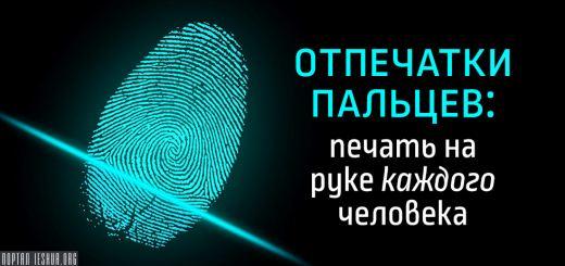 Отпечатки пальцев: печать на руке каждого человека