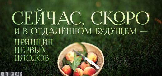 Сейчас, скоро и в отдалённом будущем - принцип первых плодов