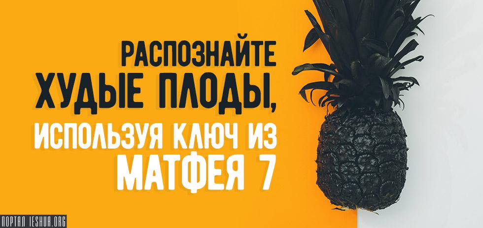 Распознайте худые плоды, используя ключ из Матфея 7
