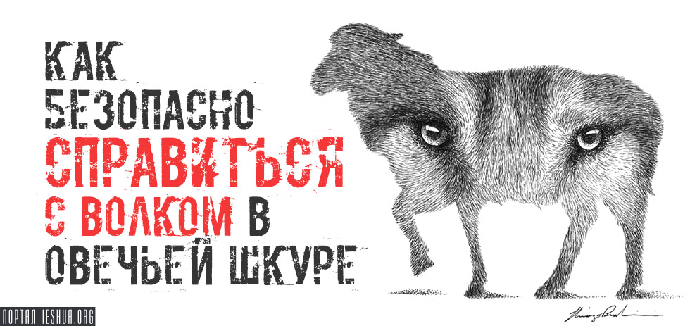 Как безопасно справиться с волком в овечьей шкуре