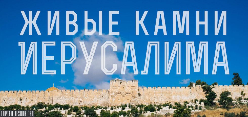 Живые камни Иерусалима