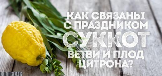 Как связаны с праздником Суккот ветви и плод цитрона?