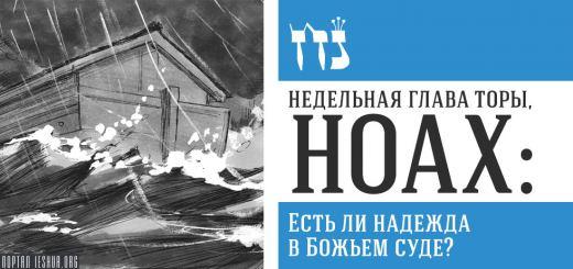 Глава Торы. Ноах: Есть ли надежда в Божьем суде?