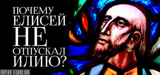 Почему Елисей не отпускал Илию?