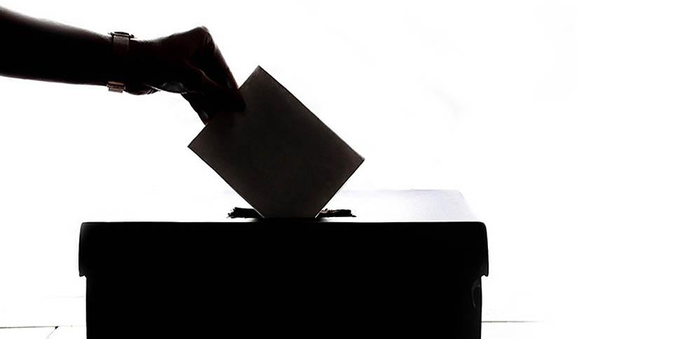 raichinetz-vybory4