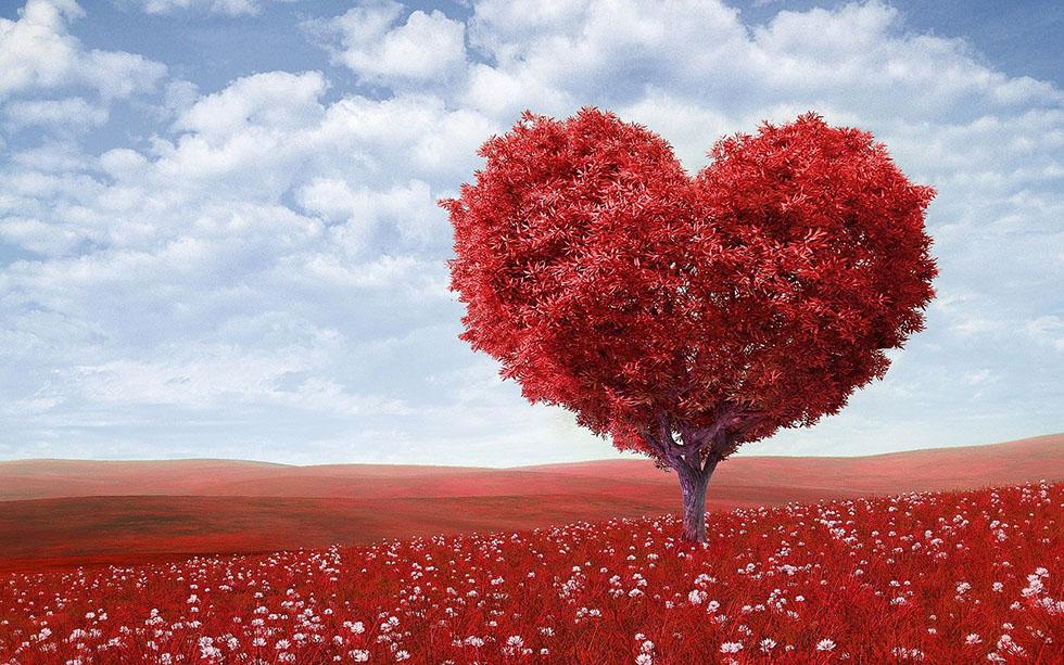 18 библейских цитат о любви к ближнему