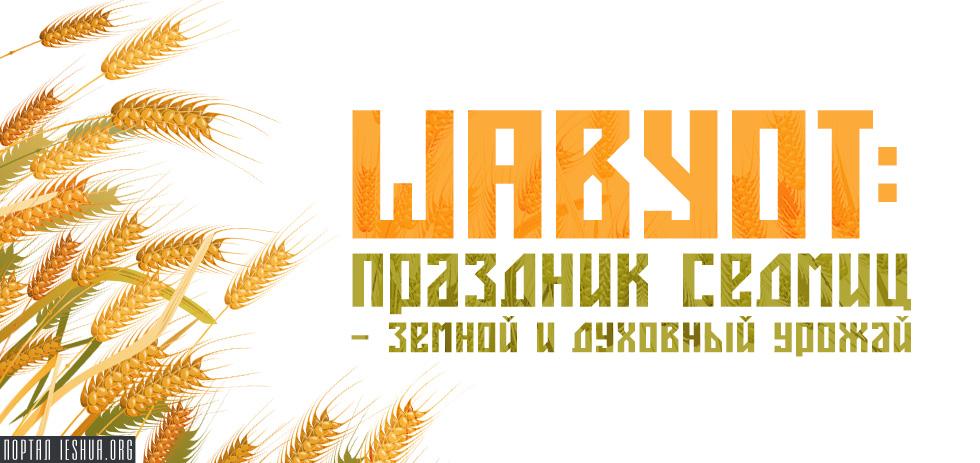 Шавуот: Праздник Седмиц — земной и духовный урожай