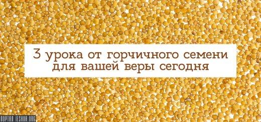 3 урока от горчичного семени для вашей веры сегодня
