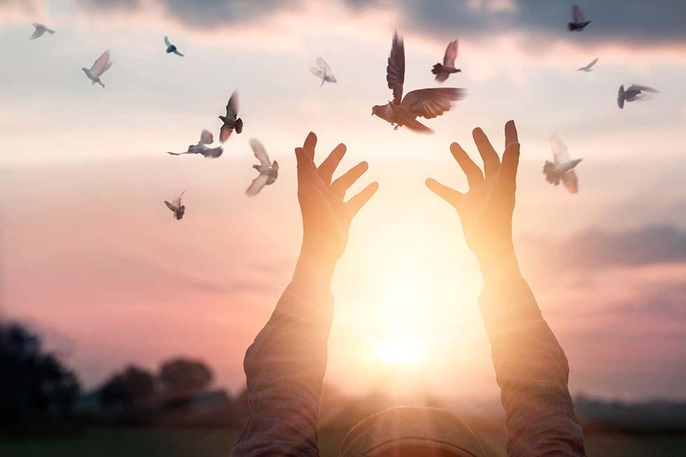 свобода от греха