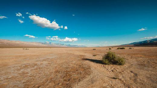 Что такого важного в пустыне?